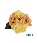Carnation Flamenco flowers