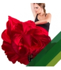 Flamenco Skirt For Women